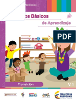 DBA_Transicion_2016 (1)