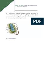 Ficha de Exercicios Celula Corrigida