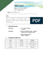Curriculum Vitale Rubi (2)
