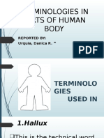 Terminologies in Parts of Human Body