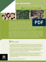 Flujo de Materiales y Productividad de Recursos en América Latina