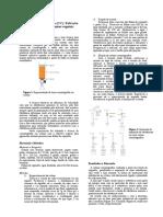 Relatório Cromatografia em Coluna
