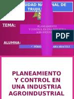 Perez Alcantara Araceli