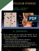 ESPERMATOLOGIA_FORENSE