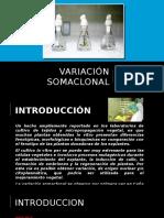 variacionsomaclonal-140714132743-phpapp02
