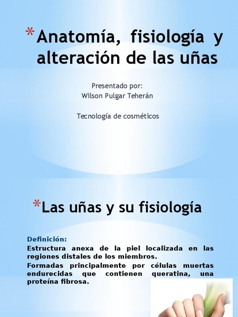 anatomafisiologayalteracindelasuas-110321094415-phpapp01