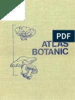 Atlas Botanic - High Quality