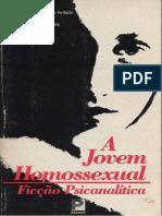 Mezan Kehl Cesarotto a Jovem Homossexual Ficcao Psicanalitica