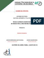 Formato Informe Estadias TFAR 2016