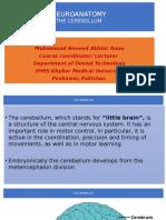 Cerebellum.pptx