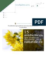 15 Antibióticos Que Podemos Encontrar Directamente en La Naturaleza – La Voz Del Muro