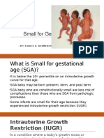 Small for Gestational Age PPT
