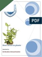 Heat Stress in Plants
