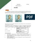TP 5 Vectores.pdf