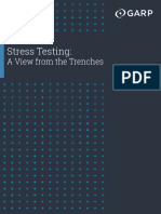 Stress Testing A View from the Trenches.pdf