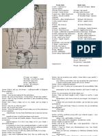Human Body Anatomy, Traffic Accident