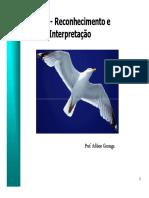 Aula_8.pdf