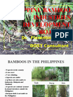 327536107 Philippine Bamboo Industries Development Roadmap by Dr Florentino Tesoro