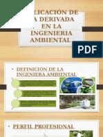 Aplicación de La Derivada en La Ingeneria Ambiental.ppt