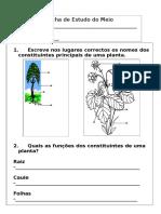 2º ano-plantas_animais.doc