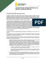 8_Documentacion_sistema_preventivo.pdf