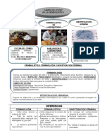 3º CLASE -CAMPOS DE LA CRIMINALISTICA.doc