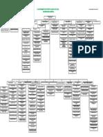 organigrama general solo puestos.pdf