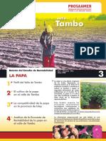 boletin_papa_tambo.pdf