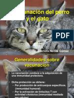 vacunacion.pdf