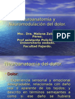 neuroanatmia_y_neurom.dolor-_modulo_aps.ppt