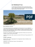 Hing Asafoetida Medicinal Uses