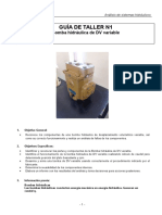Guía N°1 Bomba DV variable