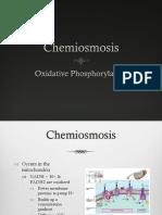 Chemiosmosis HL