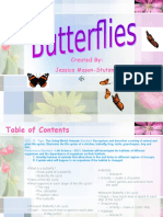 Butterfly PPT 2