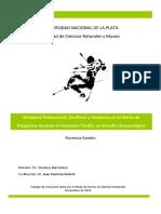 Dinámica Poblacional, Conflicto y Violencia Patagonia