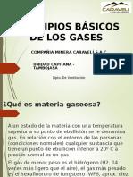 Principios Básicos de Los Gases