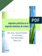 aspectos_prcticos_en_la_engorda_intensiva_de_ovinos.pdf