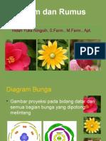Rumus n Diagram Bunga