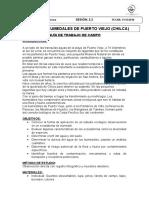 2.2.Canete Guia de Trabajo Campo Chilca