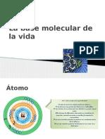 Atomos y Moleìculas (1)