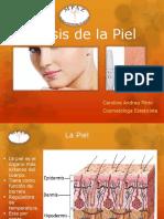 Analisis Piel.pdf