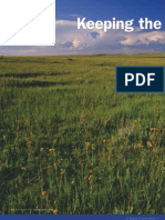Prairie Conservation Montana Outdoors
