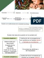 2) Ecología Oral II