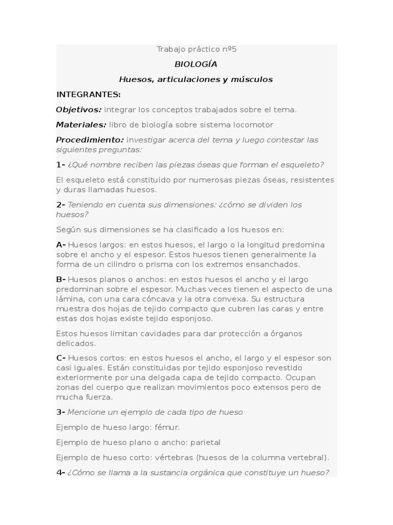 Atractivo El Lenguaje De La Hoja De Trabajo De Anatomía Galería ...