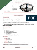hidatidosis- parasitologia