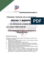 2-Pecho y Mariposa, Ponencia