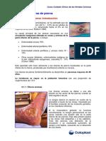 Úlceras Pierna
