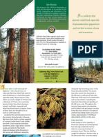 Calaveras Big Trees State Park Brochure