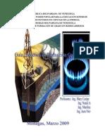 Guía de Producción de Gas Natural Ubv (1)
