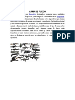Arma de Fueg1